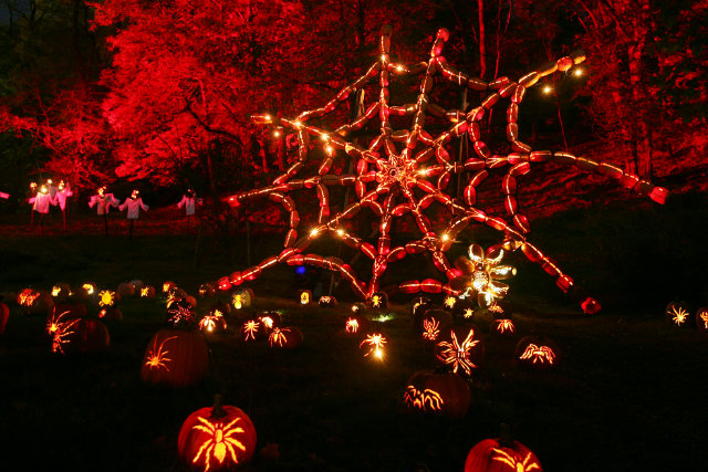 Great Jack O'Lantern Blaze - Copyright Bryan Haeffele and Joshua Bouselfor Historic Hudson Valley (10)