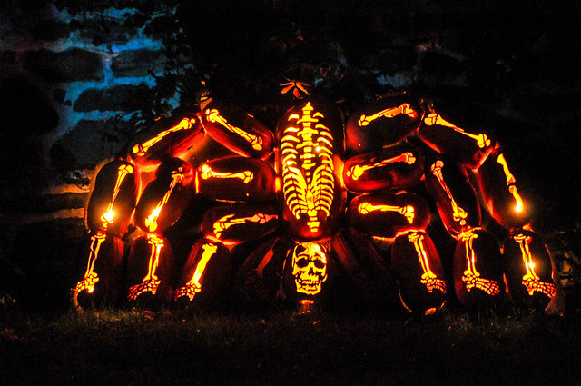 Great Jack O'Lantern Blaze - Copyright Bryan Haeffele and Joshua Bouselfor Historic Hudson Valley (11)