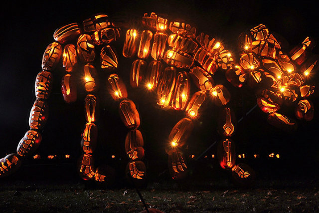 Great Jack O'Lantern Blaze - Copyright Bryan Haeffele and Joshua Bouselfor Historic Hudson Valley (3)