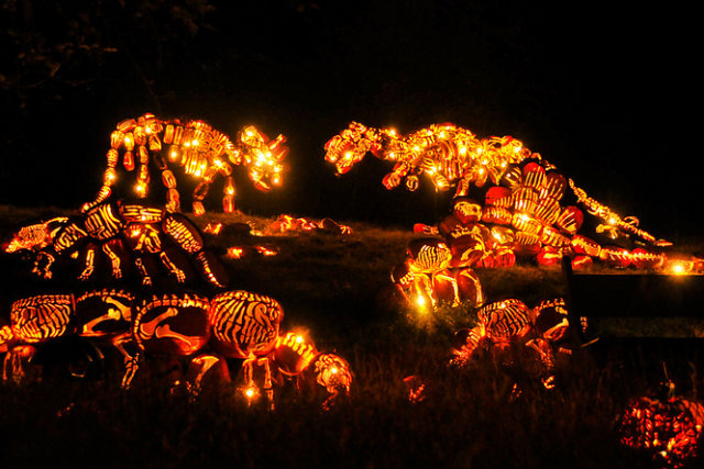 Great Jack O'Lantern Blaze - Copyright Bryan Haeffele and Joshua Bouselfor Historic Hudson Valley (4)